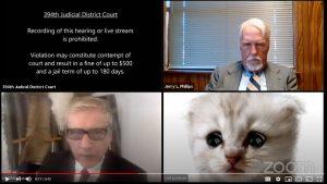 Lawyer appears in court as a kitten in snafu